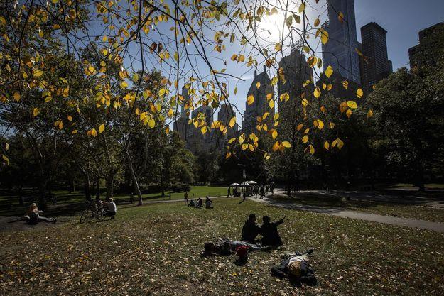 Central Park au soleil