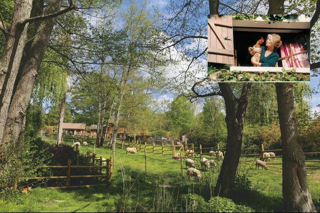 En haut, le refuge de Bazoches. Brigitte Bardot a créé sa fondation en 1986. Aujourd'hui, son association est appelée sur tous les fronts, dans des dizaines de pays