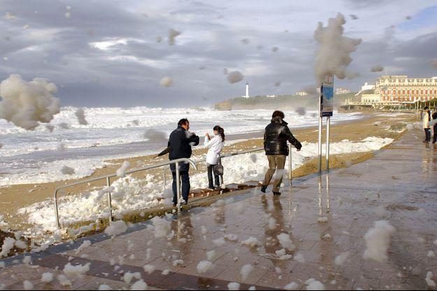Quand l'océan s'agite, des mousses brunâtres apparaissent à Biarritz, remplaçant l'écume naturelle.