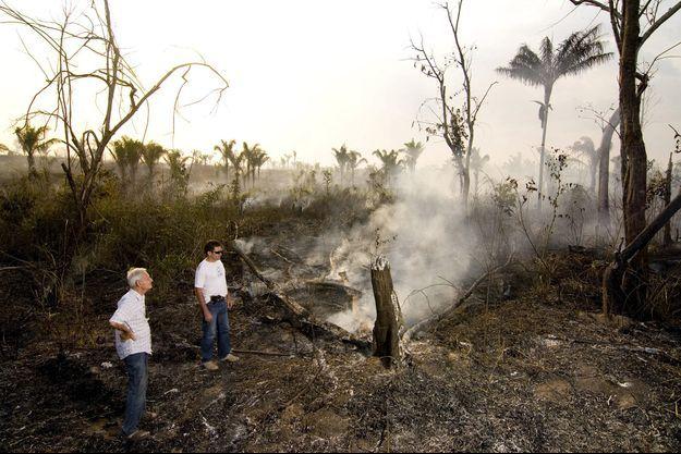 Le père Henri Burin des Roziers devant un arbre calciné dans l'Etat de Para, en Amazonie.