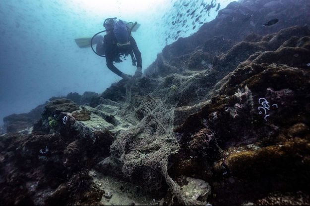 """Un pêcheur de l'association Net Free Seas décroche un filet de pêche """"fantôme""""."""