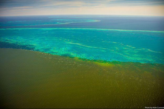 Les sédiments menacent la Grande barrière de corail en Australie.
