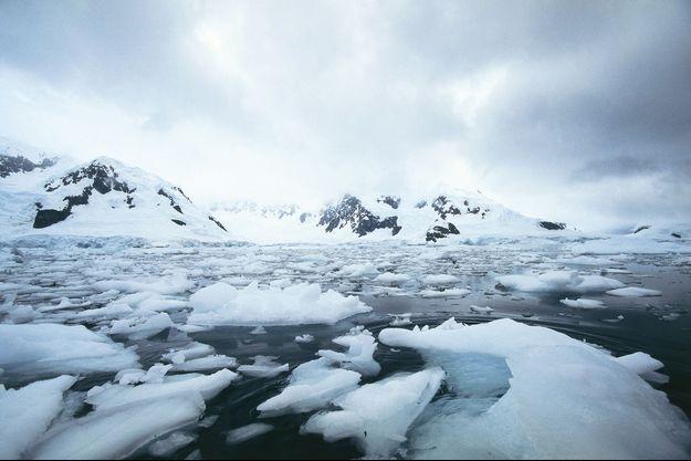 Paradise Bay, Antarctique en 2008. (Photo d'illustration)