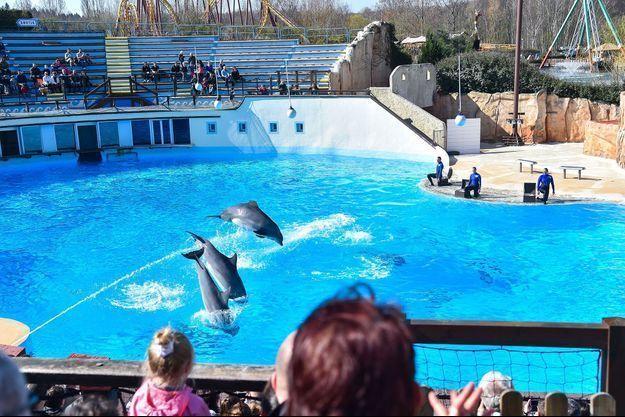 Le delphinarium du Parc Astérix.