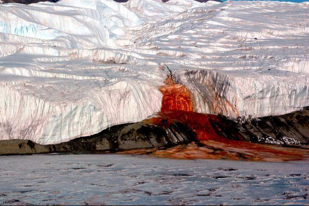 """Les """"Cascades de sang"""" d'Antarctique."""