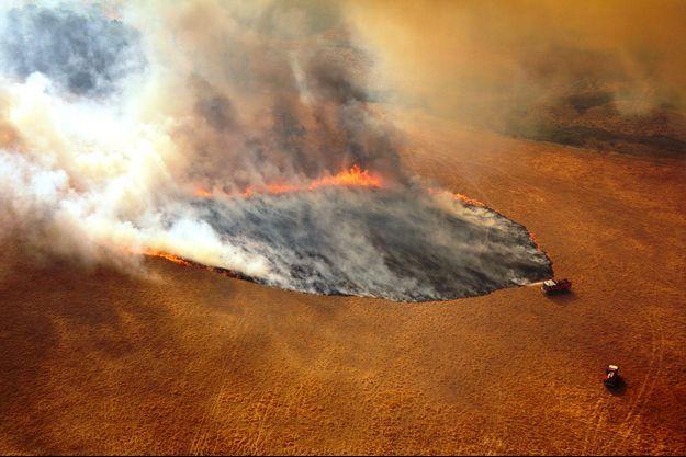 Un champ en feu dans l'Etat de Victoria, en Australie.