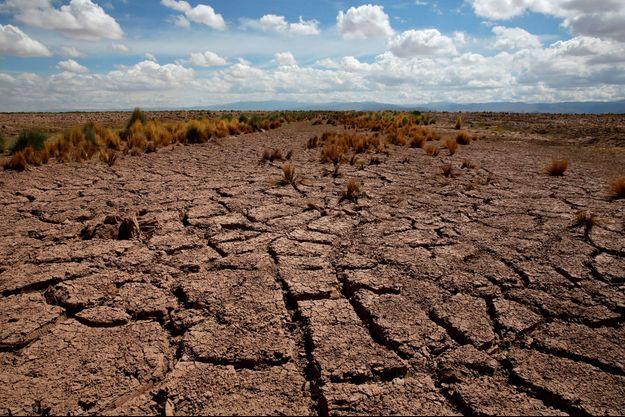 La terre craque sous l'effet de la sécheresse en Bolivie
