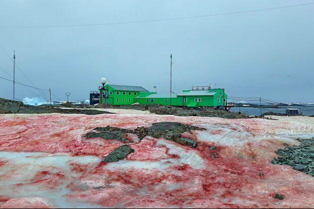 La glace rouge près de la station de recherche scientifique, en Antarctique.