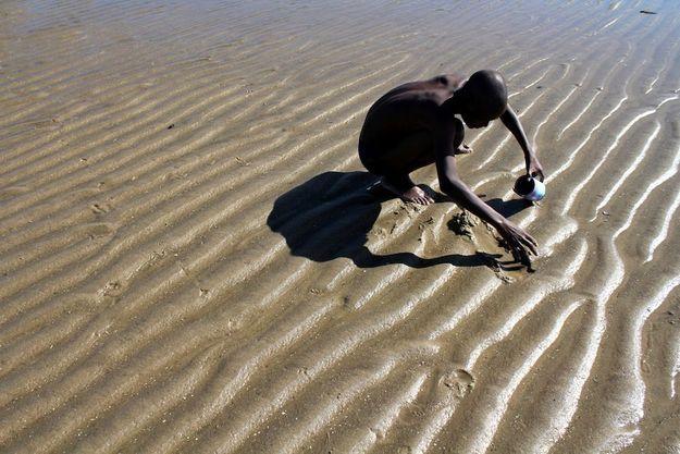 A Maputo, au Mozambique, un homme fouille le sable à la recherche de coquillages.
