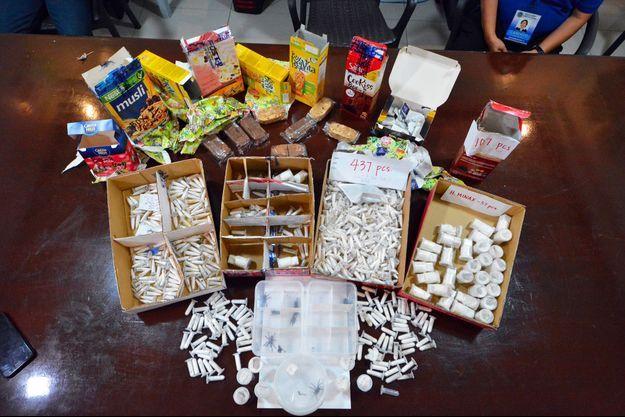 Un cliché fourni mercredi par les douanes des Philippines, mercredi, montre les animaux saisis.