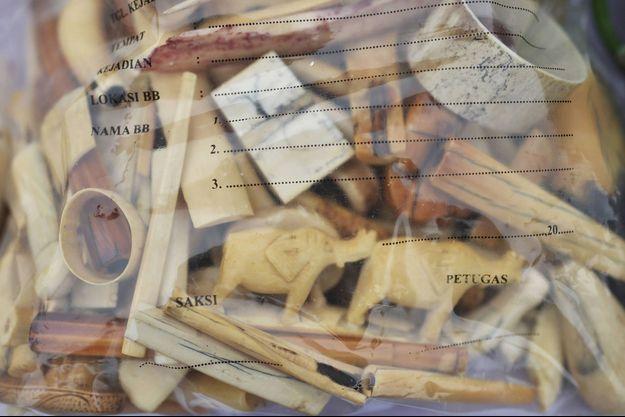 Objets en ivoire saisis en Indonésie en août 2021. (Photo d'illustration)