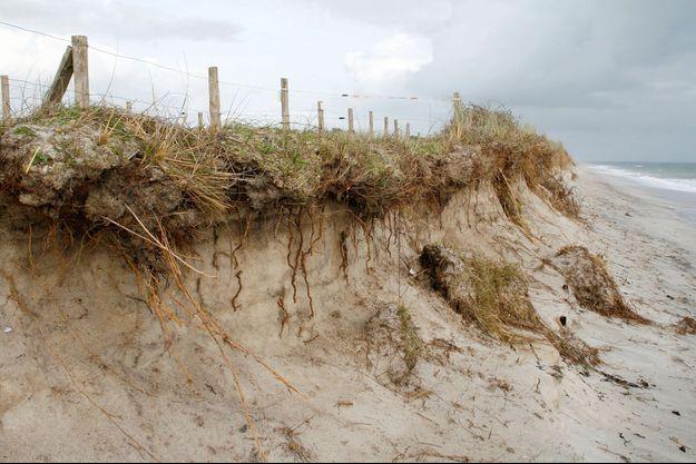 Une dune qui s'érode au Finistère.