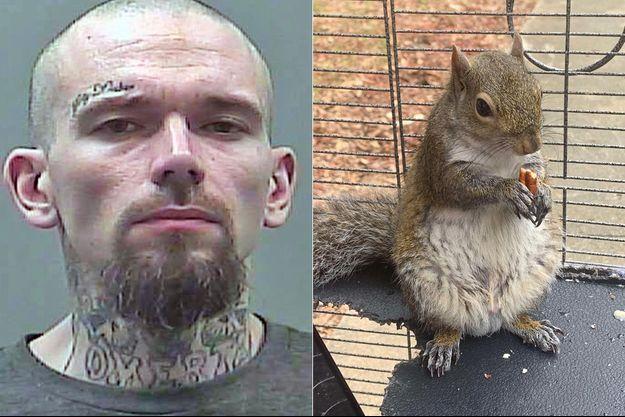 La police de Limestone, dans l'Alabama, a publié une photo de Mickey Paulk et de l'écureuil découvert chez lui.