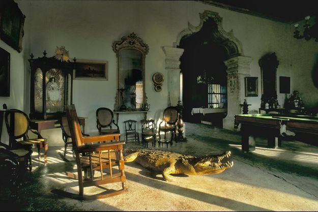 Illustration d'un crocodile dans un logement.