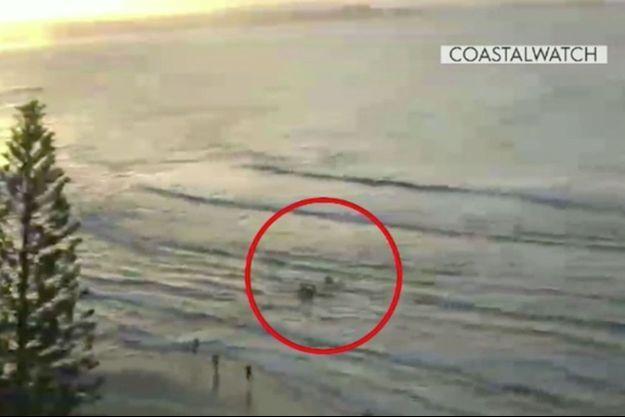 Le surfeur a été attaqué par un requin mardi.