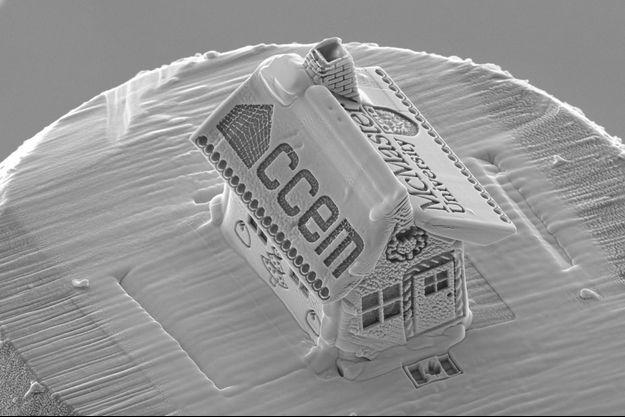 La maison mesure 10 microns.