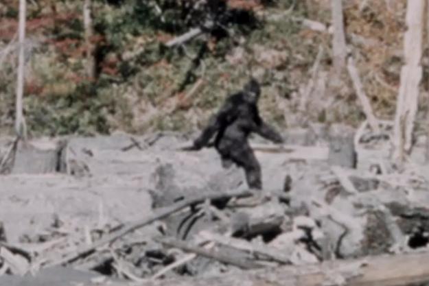 L'une des images les plus troublantes du Bigfoot, qui aurait été filmé en 1967, en Californie.