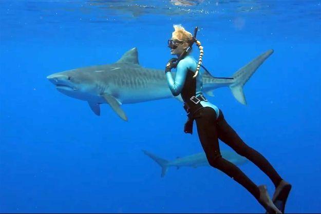 Ocean Ramsey et deux requins-tigres.