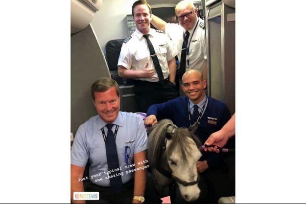 Le cheval Flirty et l'équipage du vol.