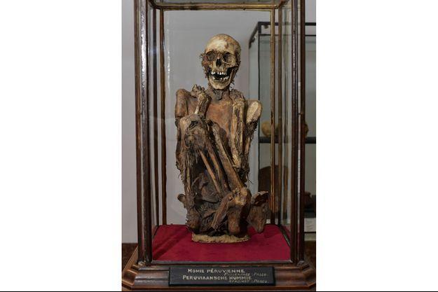 La momie qui a inspiré le personnage de Rascar Capac, au Musée Art et Histoire (MAH) de Bruxelles.