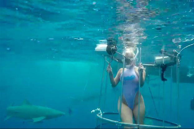 L'actrice de films pornographiques Molly Cavalli dans la cage au milieu des requins.