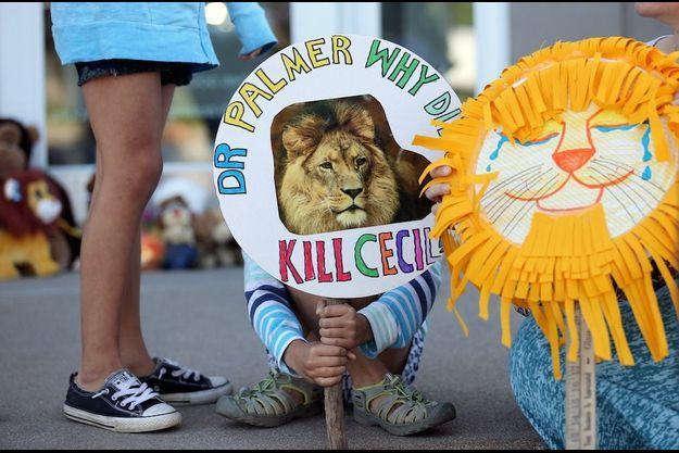 Une manifestation devant la clinique dentaire de Walter Palmer, le chasseur américain qui a abattu Cecil.