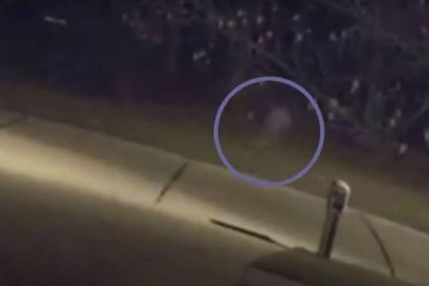 Dans le cercle, la mystérieuse silhouette de l'enfant filmé par une caméra de surveillance.