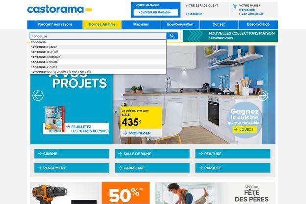 Capture d'écran de la barre de recherche du site Castorama