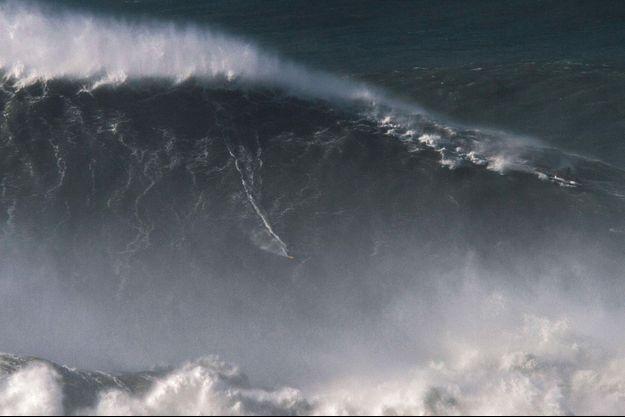 En novembre 2017, le surfeur Rodrigo Koxa a battu le record du monde de la plus grande vague jamais surfée: un monstre de 24,38 mètres de haut.