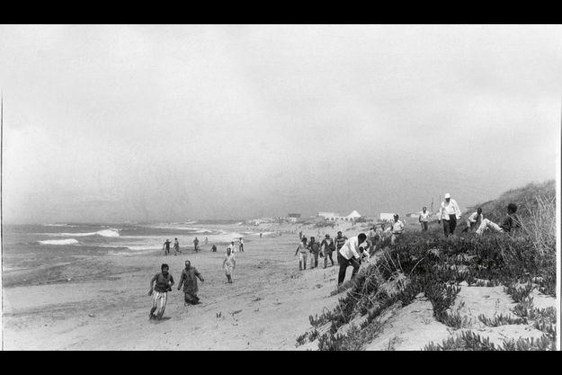 Sur la plage, les rescapés de la tuerie se mettent à l'abri, loin des pavillons blancs du palais royal