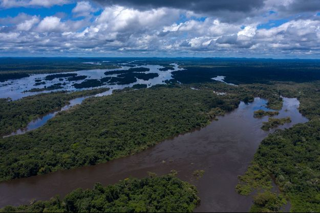 Rivière Iriri, en Amazonie.