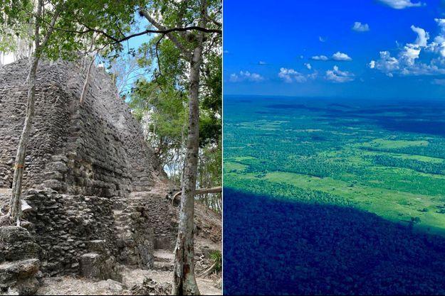 Le bassin du Mirador, au Guatemala, est menacé par les incendies, le trafic de drogue et le pillage.