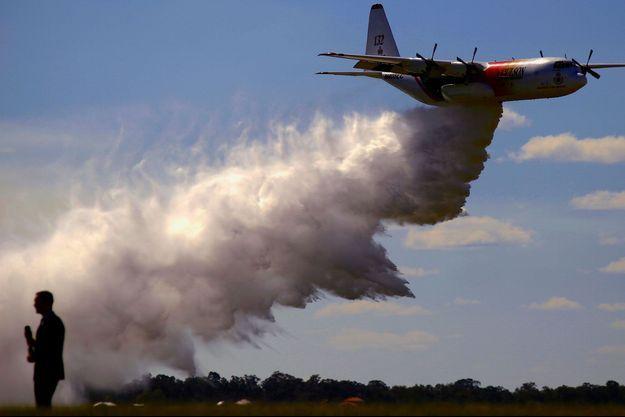 Un bombardier d'eau en Australie. Image d'illustration.