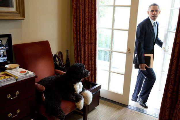 Bo, Barack Obama