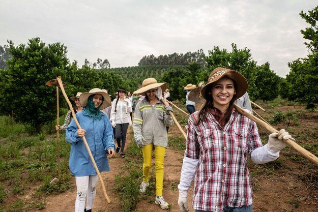 Le 21 octobre, 6 heures du matin. Les femmes du village partent désherber les champs d'orangers et de mandariniers. Leur exportation constitue l'un des revenus du village.