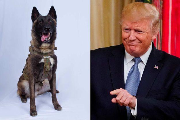 Conan, Donald Trump