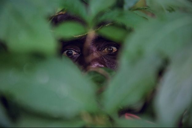 """Andrew, père de famille de 43 ans, fait partie des """"hyènes"""" et le revendique fièrement... mais à l'abri des regards de la police. Dans la région de Nsanje, le 16 avril."""