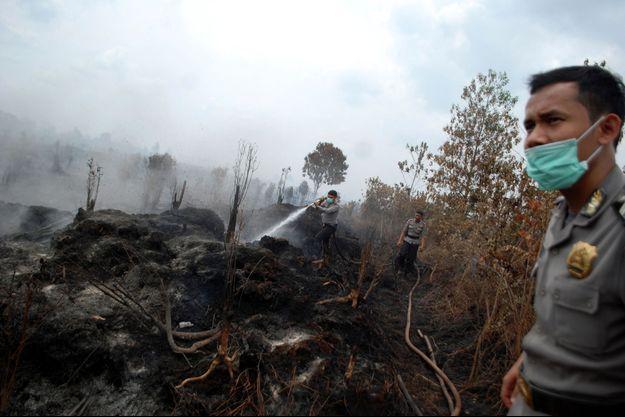 Les incendies de forêts volontaires ravagent l'Indonésie, comme ici à Kampar, le 29 août.