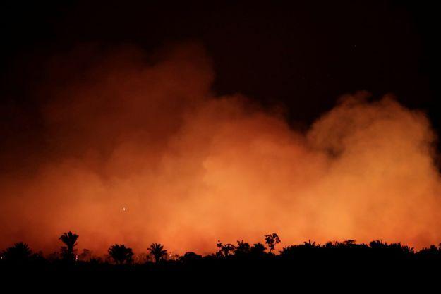 Les incendies continuent de consumer la forêt d'Amazonie.