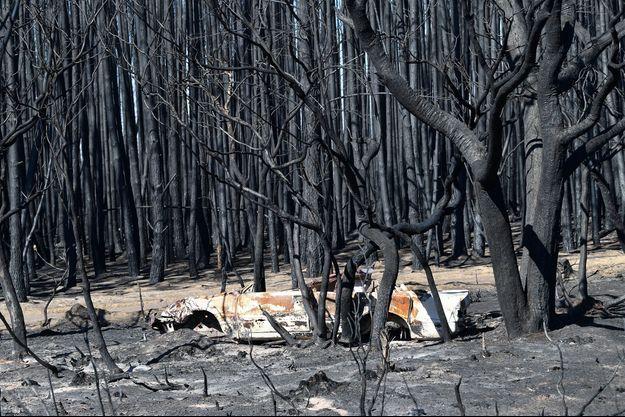 Kangaroo Island, en partie détruite par les incendies en Australie.