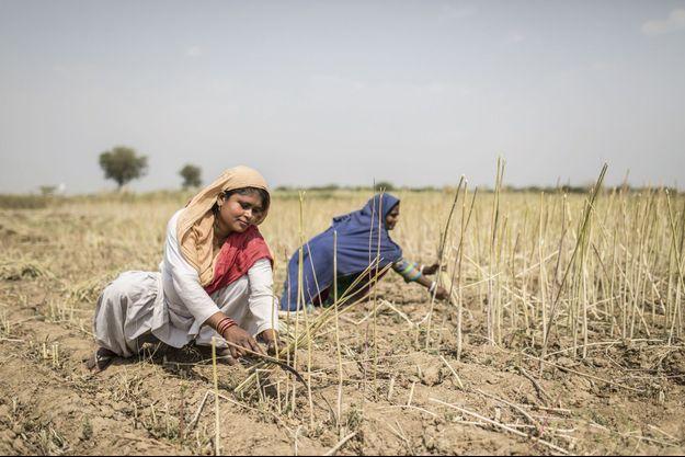 Inde : une épouse esclave pour 300 €