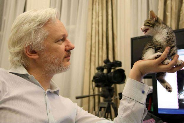 Julian Assangei avec son petit chat qui n'a pas encore de nom.
