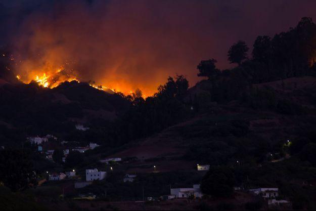 L'incendie qui ravage l'île espagnole de Grande Canarie était lundi hors de contrôle/