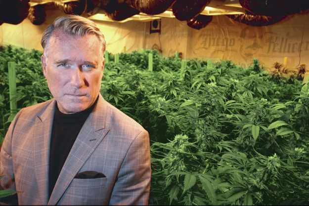 """Douglas Anderson: """"Mon cannabis sera vendu dans une boutique luxueuse, pas dans une officine louche."""""""