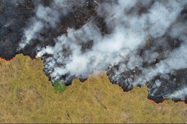 Une partie de l'Amazonie ravagée par les flammes.