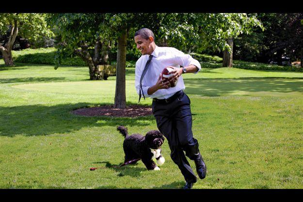 Pelouse sud de la Maison-Blanche, 12 mai 2009. Barack Obama joue au football américain avec Bo.