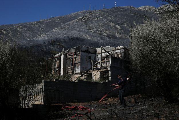 Les pompiers grecs ont maîtrisé lundi matin un incendie de forêt à Athènes.