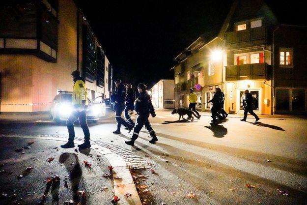Dans Kongsberg, petite ville de près de 25.000 habitants à environ 80 kilomètres à l'ouest d'Oslo, l'accès aux lieux de l'attaque était bloqué par un cordon de police et des agents.