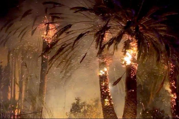 Un nouvel incendie s'est déclaré dans la nuit de jeudi à vendredi dans le comté de Ventura.