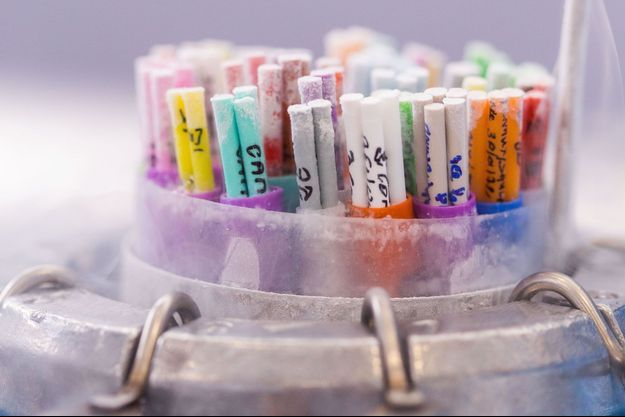 Echantillons de sperme congélés